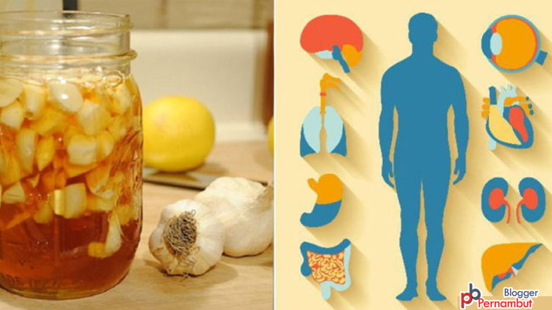 Eat-Garlic-and-Honey-on-an-Empty-Stomach